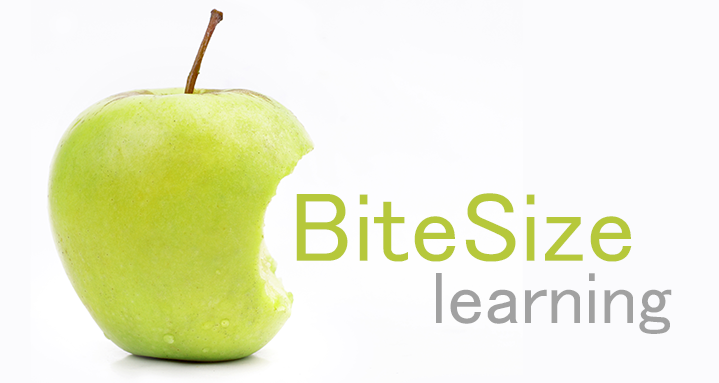 The Rise Of Bitesize Elearning